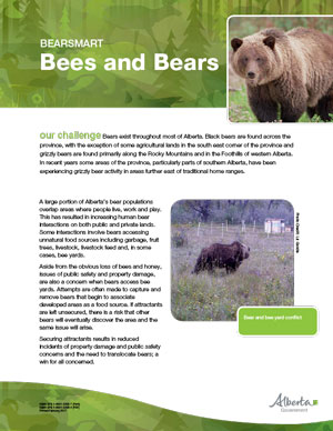 Bees-and-Bears-Fact-Sheet-2017